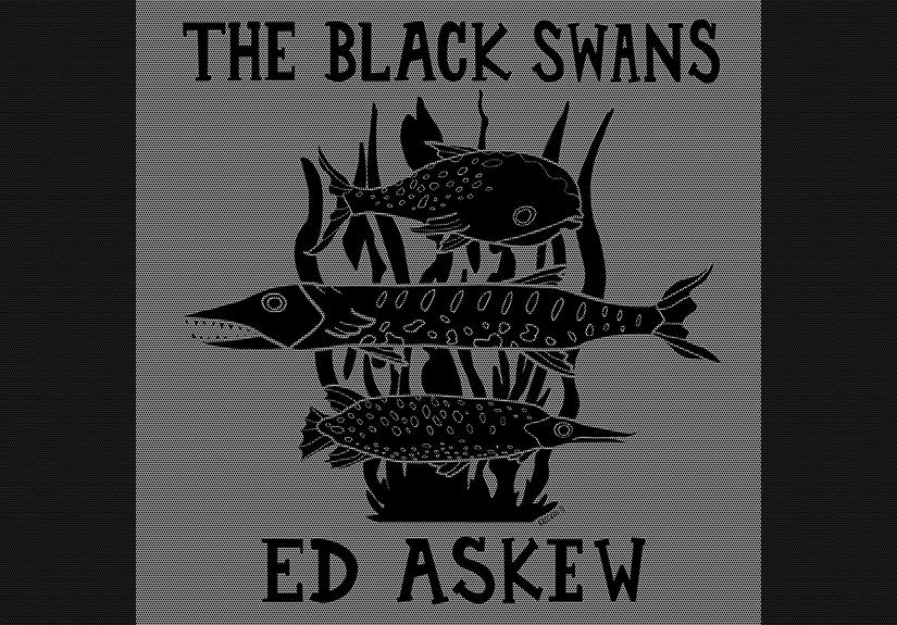 sábado 16-11-2012 concierto acústico the black swans