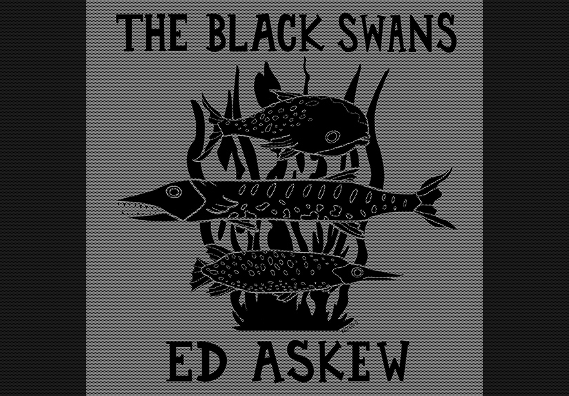 saturday 16-11-2012 acoustic concert the black swans
