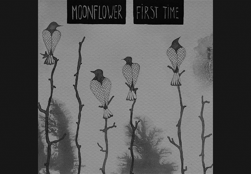 friday 15-06-2012 acoustic concert monnflower